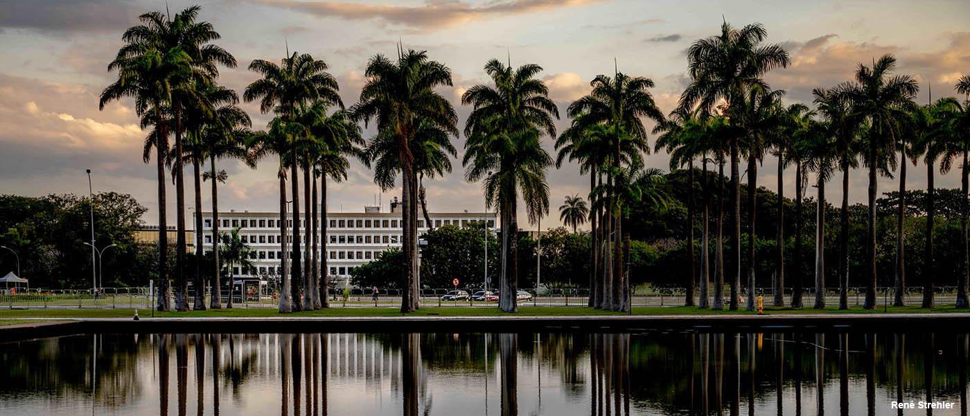 Université  de Brasilia, l'Université Estadual Paulista Júlio de Mesquita Filho